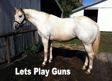 LETS PLAY GUNS
